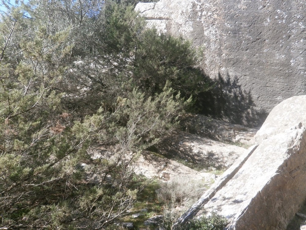 Encuentran tres antiguas canteras de mármol en Grecia, con columnas inacabadas