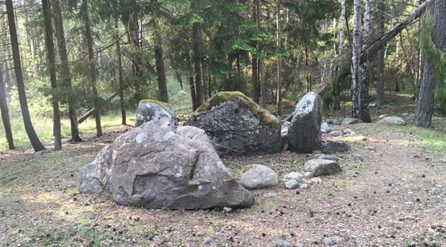 Un estudio sugiere que las tumbas megalíticas europeas eran tumbas familiares