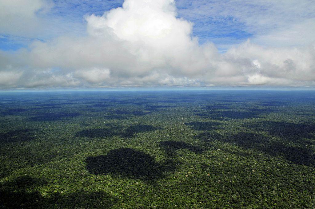 El cambio climático tuvo un impacto significativo en las comunidades amazónicas antes de la llegada de los europeos, según un estudio