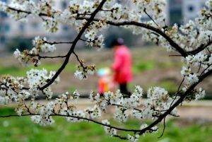 Primavera da incubo per l'intestino