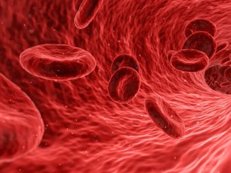 Emofilia-sangue-copertina