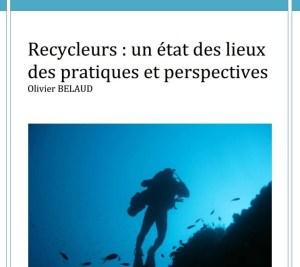 Recycleurs - un état des lieux des pratiques et perspectives - Mémoire Olivier BELAUD