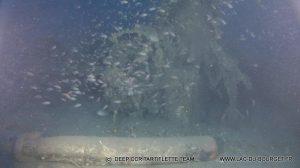 Plongée recycleur épave Dornier 24 port Cros