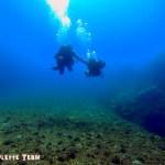 Baptême de plongée Choupinette