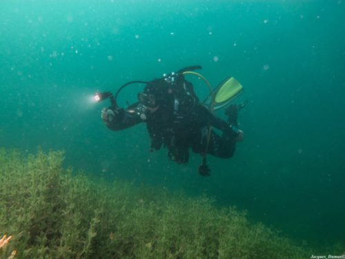 Plongée en région parisienne au lac des Ciments Lac de Beaumont sur Oise