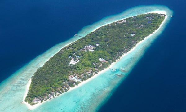 Plongée Soneva Fushi Maldives