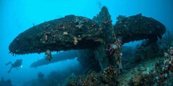 Plongée sur les épaves de la seconde guerre mondiale (P47) à Raja Ampat en Indonésie