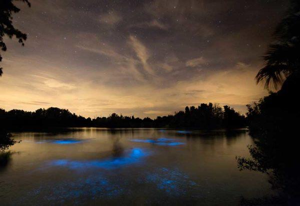 Indian River Lagoon, Floride
