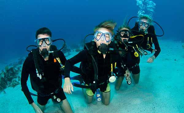 Apprendre à plonger et conservation marine