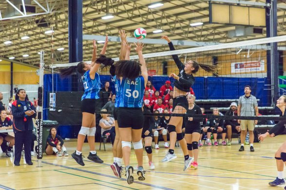 LAC_Volleyball2018_2