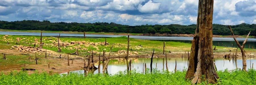 Camino Real - Panamá
