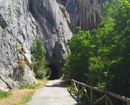 Casa rural muy cerca de la Senda del Oso, ruta de bicicleta y senderismo en Asturias
