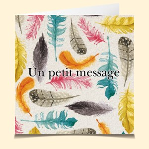 carte vocale parlante Plumetis plume