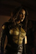 Vixen en Arrow (5)