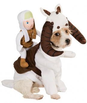 movies-tauntaun-dog-costume-large-290x341