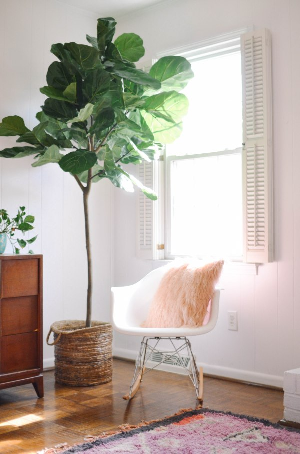 decorating with plants 1