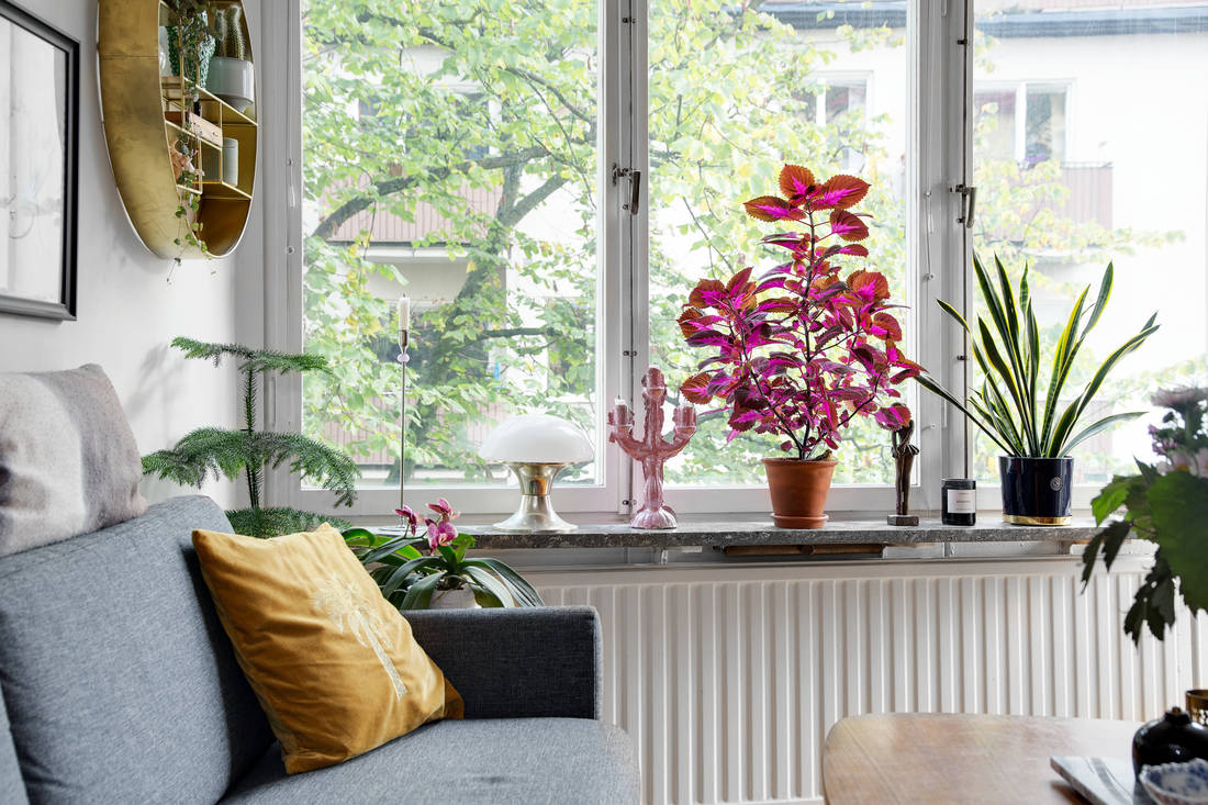 colorful rug decor apartment 03