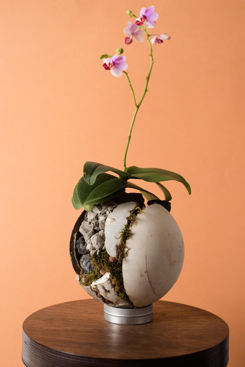 8 decorative vases that are ideal for your orchids 08