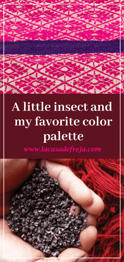Cochineal, a little insect and my favorite color palette