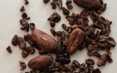 La Cascade du Chocolat's Test Kitchen: Bean-to-Bar