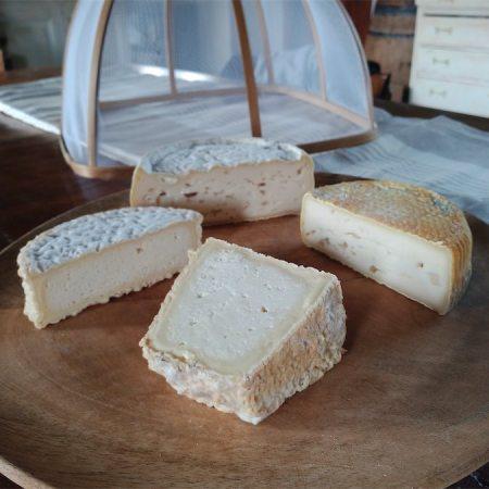 Box degustazione formaggi