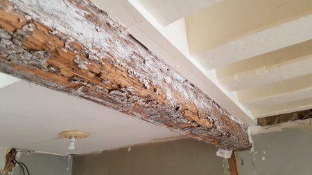 La poutre abîmée par les termites