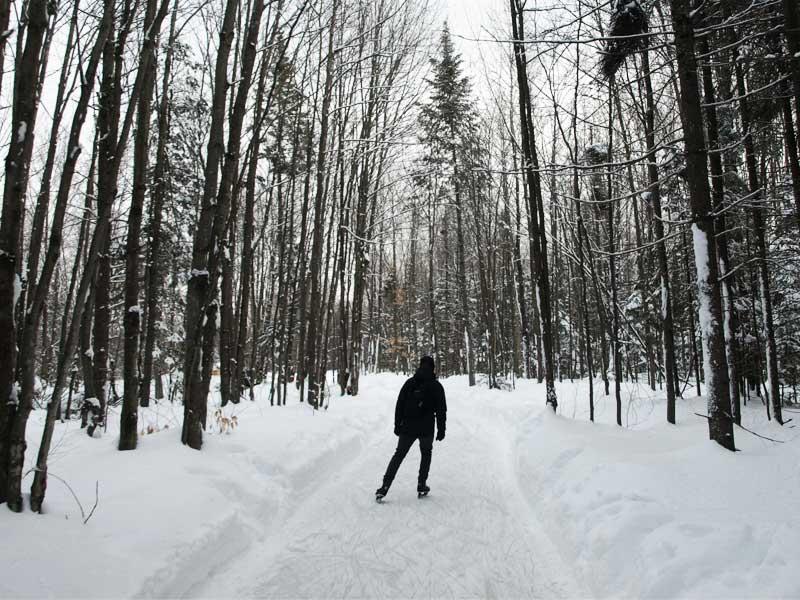 Patin en forêt dans les sentiers glacés du Domaine de la Forêt Perdue : escapade weekend hiver en Mauricie
