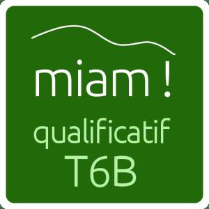 logo_twitter_qualificatif