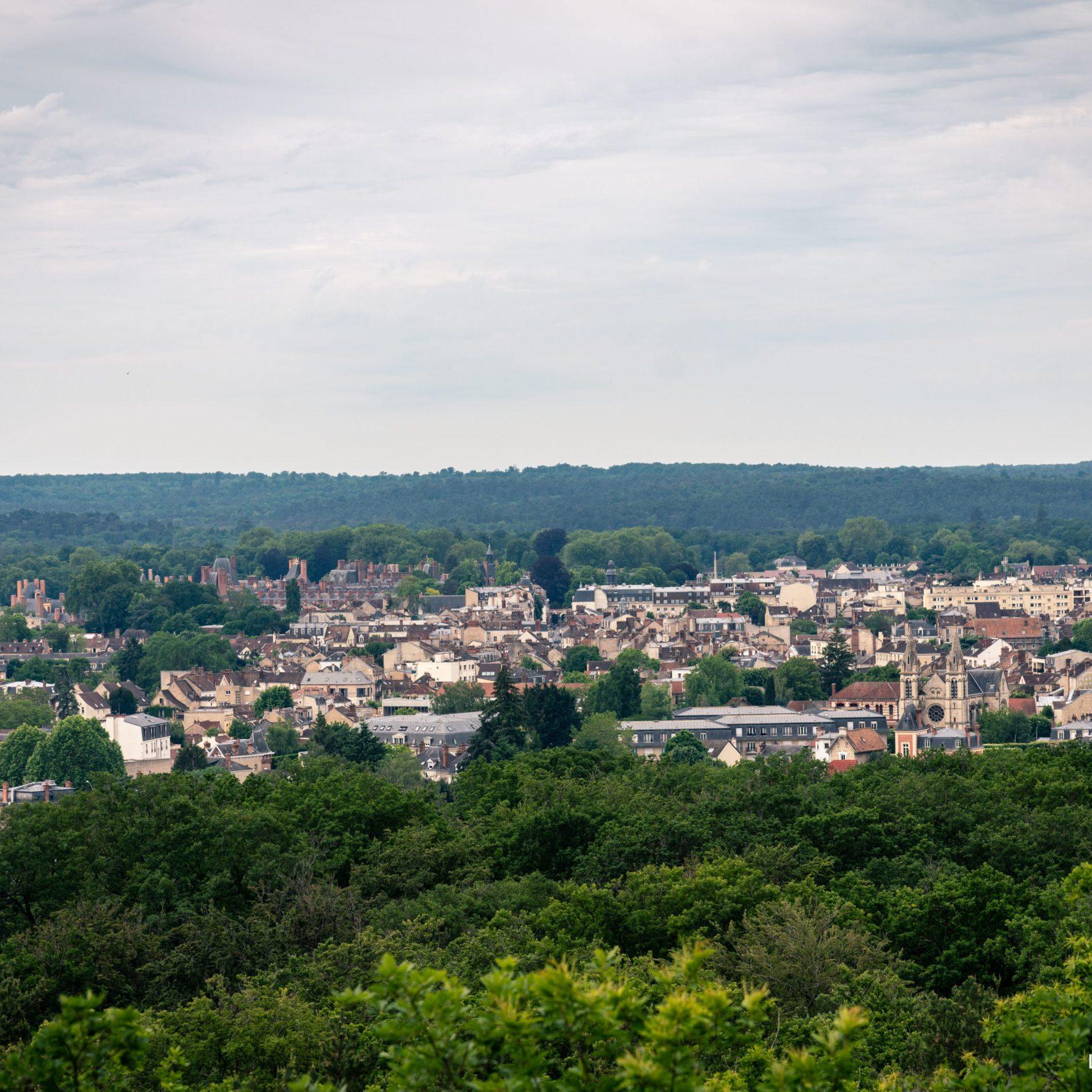 Où courir en forêt de Fontainebleau ? 8