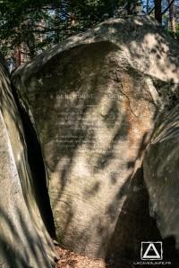 Où courir en forêt de Fontainebleau ? 41