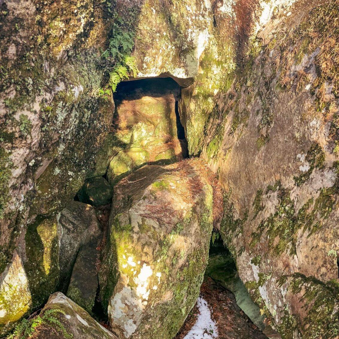 Où courir en forêt de Fontainebleau ? 77