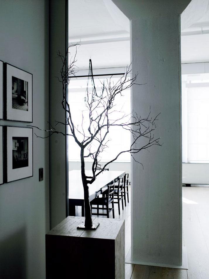 5-Tribeca-Loft-Fearon-Hay-Architects-Manhattan-New-York-photo-Richard-Powers-lachaisebleue