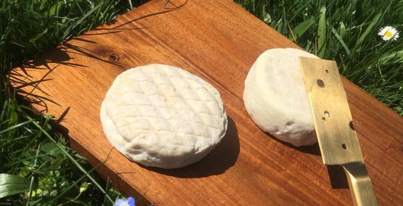 fromage de chèvre bio food truck le puy en velay