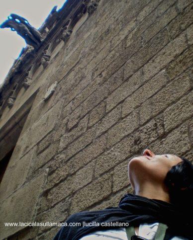 Quartieri di Barcellona cosa vedere _Barrio Gotico