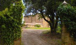 Montalcino, dove l'arte incontra il vino. Visita al Castello Romitorio