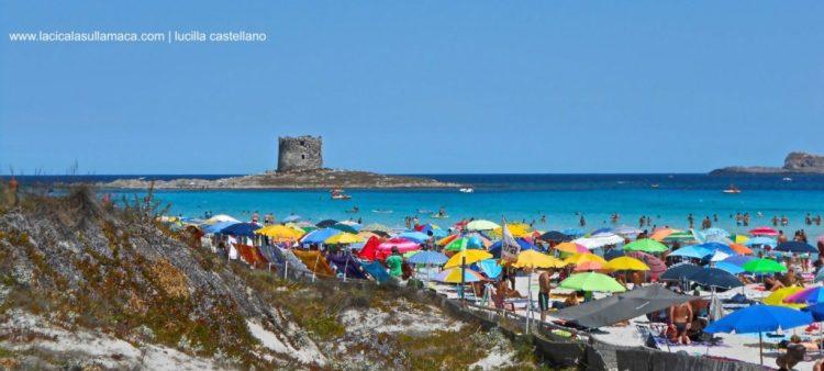 Sardegna-mare-Stintino