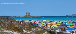 Stintino. Sardegna