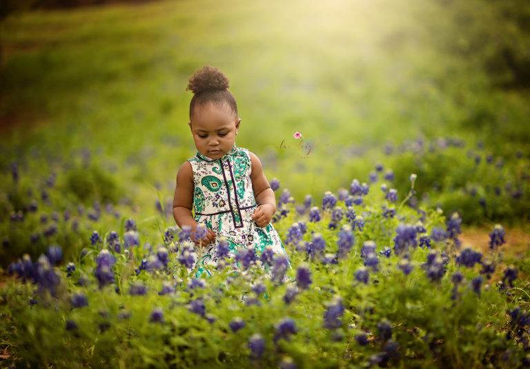Woodlands Bluebonnet Sessions