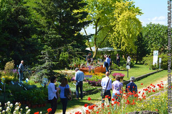 Aperto Hortus  laboratorio di giardinaggio organizzata dallOrto Botanico dellUniversit