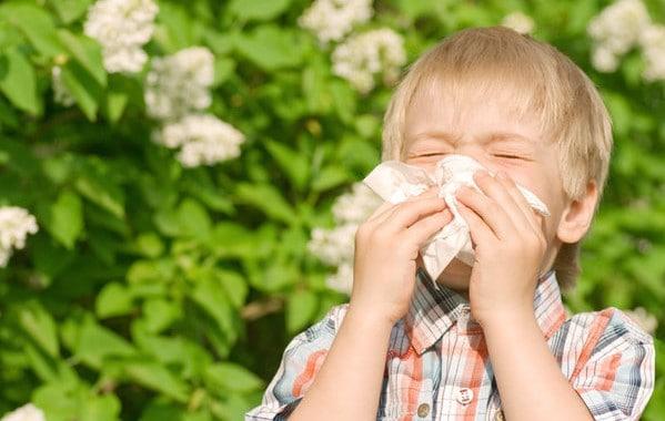 Cómo prevenir alergias comunes del otoño