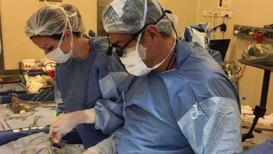 El Posadas se muere: renunció todo el equipo de Cirugía Cardiovascular Infantil y deberán cerrar el área