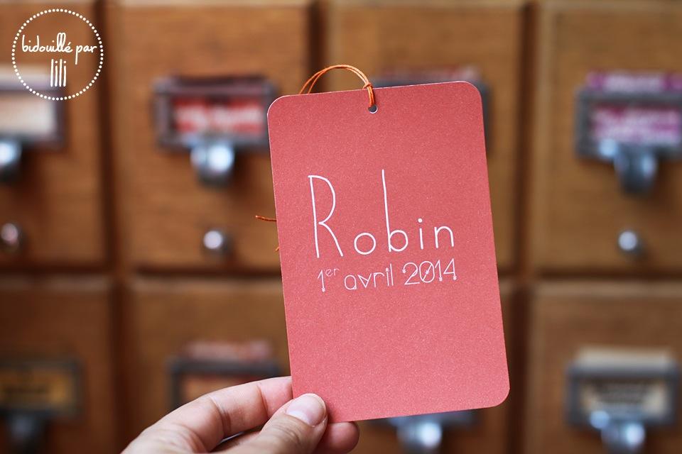 fairepart_robin2
