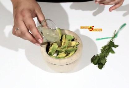 31.05.17 guacamole pap6