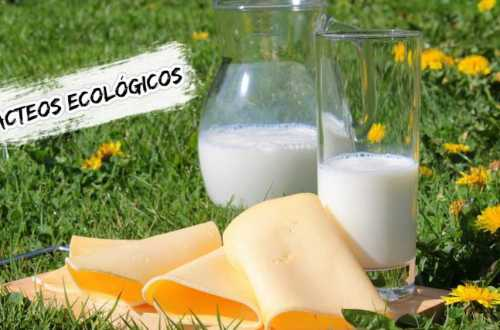 lácteos ecológicos
