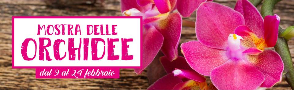 Mostra delle Orchidee