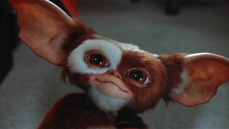 La serie de los Gremlins llegará al servicio de streaming de Warner