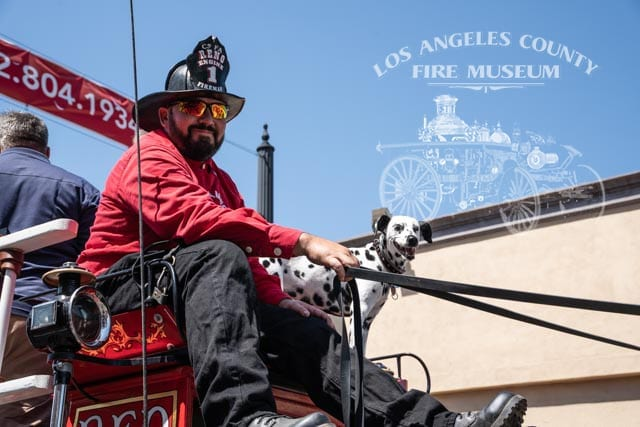 Fire fighter in old style uniform and dalmation