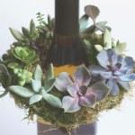 Diy Mini Live Succulent Wreath