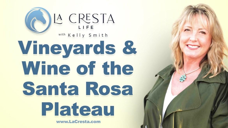 Vineyards & Wine of the Santa Rosa Plateau