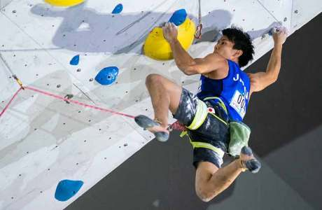 IFSC climbing competition Toulouse - information, program and live stream